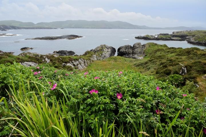 Ring of Beara, Ireland - 2016