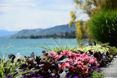 The flower walk in Montreaux, Switzerland